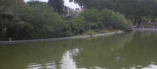 Lago del Parque Centenario