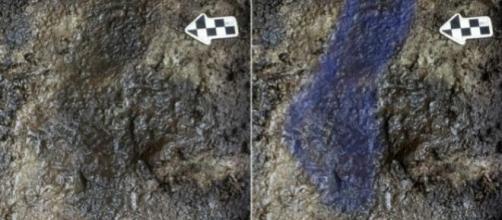 Huellas de más de 13000 años de antigüedad