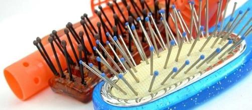 Para cada tipo de cabelo existe uma escova ideal
