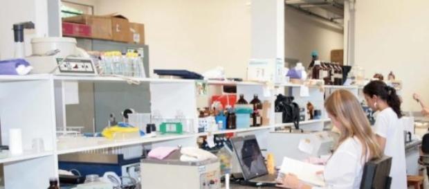 Ocupação Científica dos Jovens nas Férias