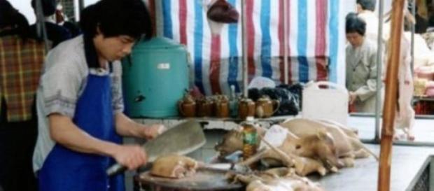Perros ya cocinados en un puesto de comida.