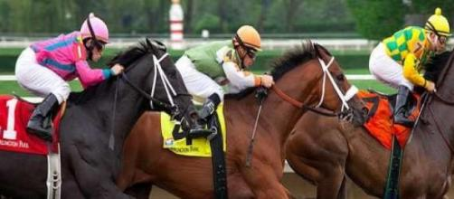 Racing Thoroughbreds battling it out