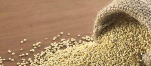 La quinoa es rica en vitaminas, fibras y minerales