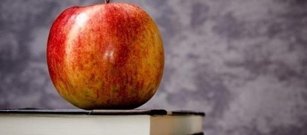 DDL 2015: come cambia la scuola