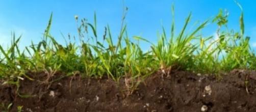 Sfruttare il suolo per ridurre l'effetto serra