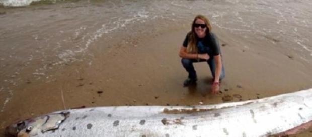 California: ritrovato impressionante mostro marino