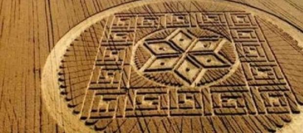 Ufo: misteriosi cerchi nel grano a Siena?
