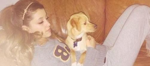 Ariana considers her pups part of the family