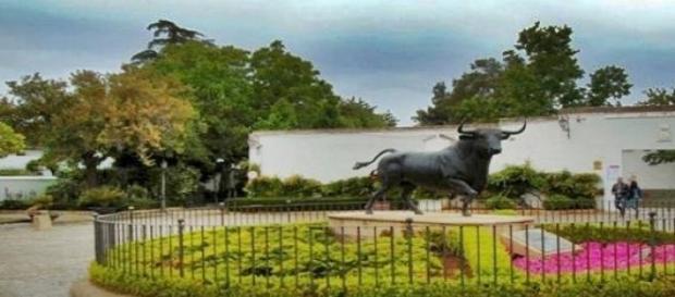 Pomnik byka przed Placem Korridy w Rondzie.