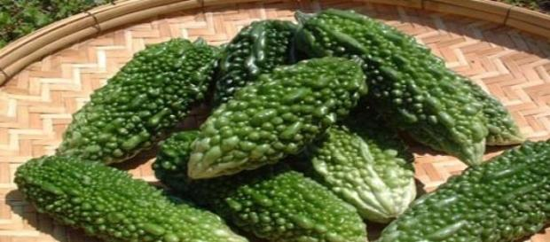 Bitter melon can cure cancer and treat diabetes