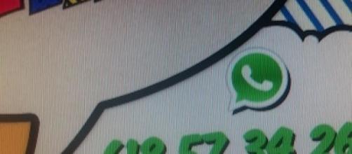 Aquí podemos observar el famoso número de Whatsapp