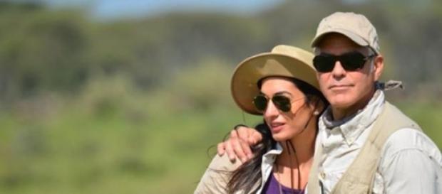 Le couple Clooeny en Afrique du Sud