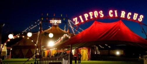 Zippos, a traditional circus.