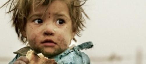 Campaña de Avaaz.org para evitar el despilfarro