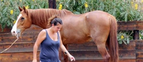 Al caballo nos acercamos sin levantar las manos