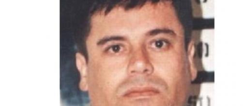 """""""El Chapo"""". Wikipedia. Dpto. de Estado de EE.UU."""