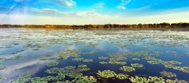 Delta Dunarii si frumusetea ei.