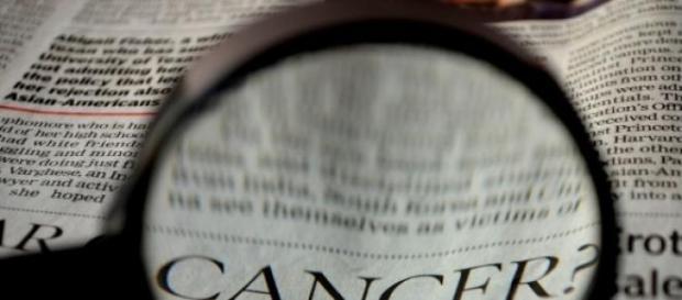 Monsanto bajo la lupa, glifosato provoca cáncer.