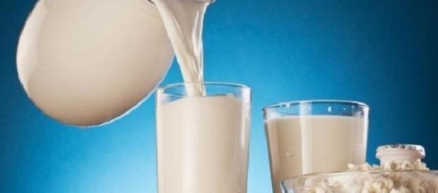 preparate din lapte de vaca