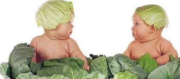 Bambino vegetariano, il desiderio.