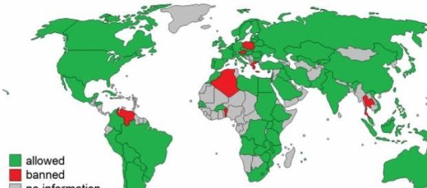 En la mayoría de países se cultivan transgénicos