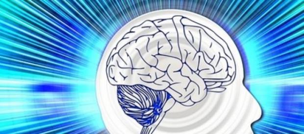 Creierul uman, mai complex decât s-a crezut.