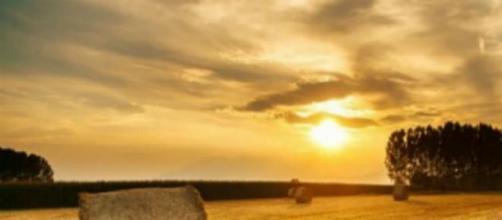 Productores agrarios protegidos por la Nación