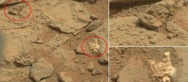 Presunto scheletro alieno scoperto dal Curiosity