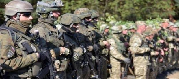 Rapid Trident-2015 - wojsko NATO i Ukrainy