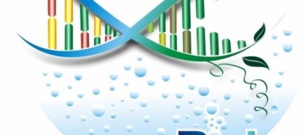 Sette domande di Biologia in vista del test