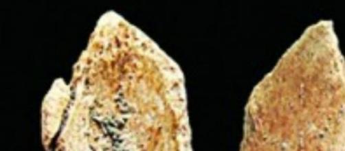 Dos fragmentos de huesos humanos de 100 mil años