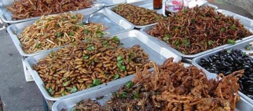 Insetti fritti a Bangkok (foto di Takoradee)