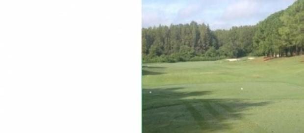 Picture of a great manicured tee box to fairway.!.