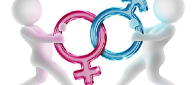Scuola e insegnamento gender, ultime news