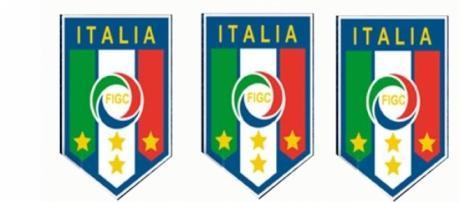 La FIGC, organizza e controlla il calcio in Italia