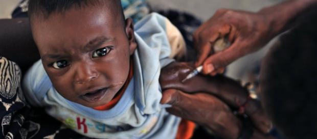 Vacina contra ebola dá resultados positivos
