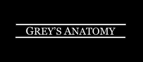 Portada de la serie, Antomia de Grey