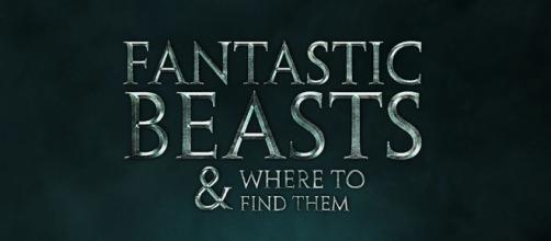 """Cartaz não oficial do spin-off de """"Harry Potter"""""""