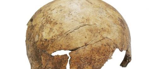 Cráneo de un niño de entre 3 y 5 años, Neolítico