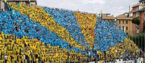 Frosinone-Torino 2015: diretta, formazioni, numeri