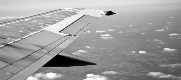 Volar como pájaros mediante vuelos Low Cost