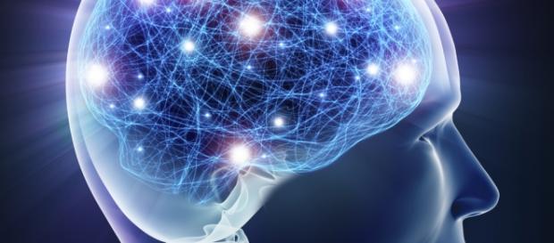 Las conexiones que crean las imágenes mentales
