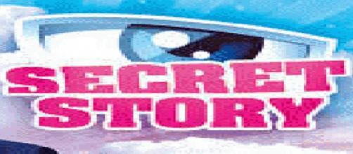 photo logo neuvieme saison de secret story