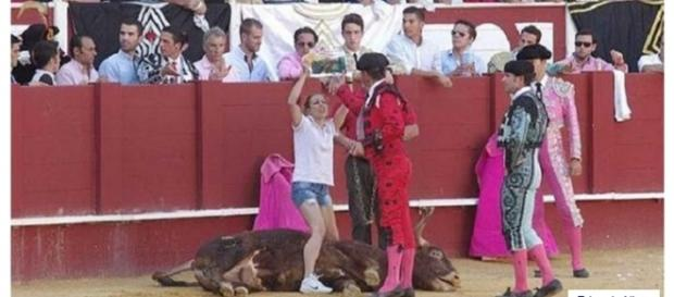 Activista lucha por los derechos del toro