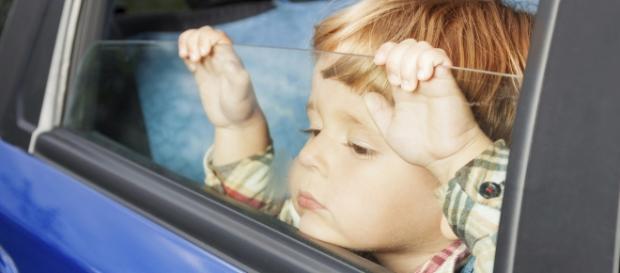 Guvernul ia la verificat copiii românilor