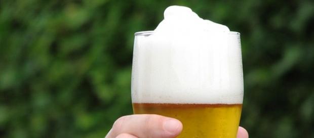 Veja como se tornar um especialista em cervejas