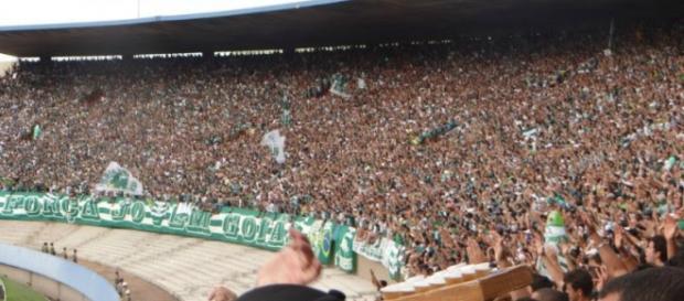 Estádio Serra Dourada - Torcida do Goiás