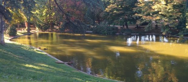 Espacio verde de Madrid. Parque El Retiro