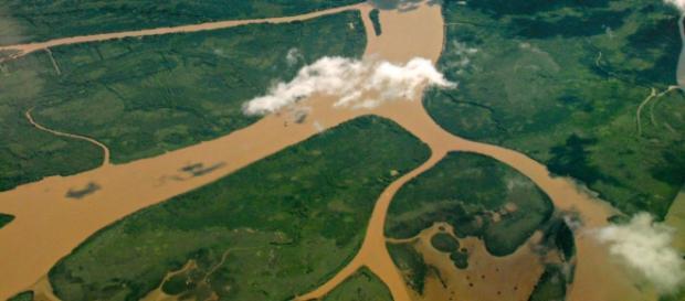 Vista aérea del Delta del Paraná por Martin Terber