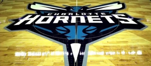 Hornets logo and beehive floor design is terrific
